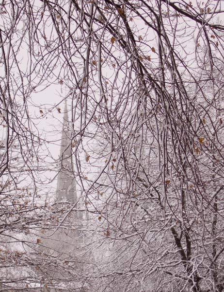 Bayonne - Jour de neige © Michel Basset